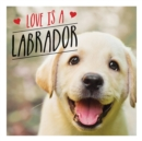 Love is a Labrador : A Lab-Tastic Celebration of the World's Favourite Dog - Book