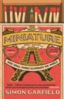 In Miniature : How Small Things Illuminate The World - eBook
