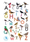 I Like Birds: An Alphabet of Birds Address Book - Book