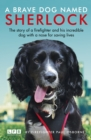 Sherlock: The Fire Brigade Dog - Book