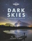 Dark Skies - Book