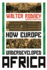 How Europe Underdeveloped Africa - Book