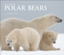 Polar Bears : A Life Under Threat - Book