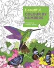 Beautiful Colour by Numbers - Book