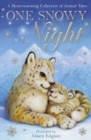 One Snowy Night - eBook