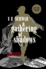 A Gathering of Shadows: Collector's Edition - Book