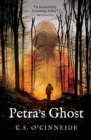 Petra's Ghost - eBook