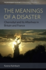 The Meanings of a Disaster : Chernobyl and Its Afterlives in Britain and France - eBook