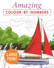 Amazing Colour-by-Numbers Large Print - Book