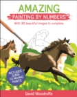 Amazing Painting by Numbers : With 30 Beautiful Images to Complete. Includes Guide to Mixing Paints - Book