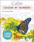 Calm Large Print Colour by Numbers - Book