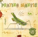 Praying Mantis - Book