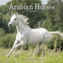 Arabian Horses 2021 Wall Calendar - Book