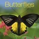 Butterflies 2021 Wall Calendar - Book