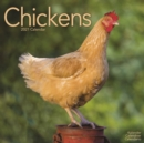 Chickens 2021 Wall Calendar - Book