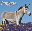 Donkeys 2021 Wall Calendar - Book