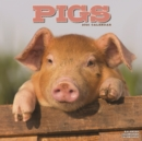 Pigs 2021 Wall Calendar - Book