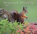 COLIN BAXTER 2021 SCOTTISH WILDLIFE CALE - Book