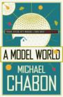 A Model World - Book