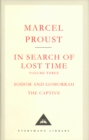 In Search Of Lost Time Volume 3 - Book