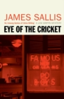 Eye of the Cricket - eBook