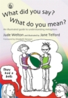 What Did You Say? What Do You Mean? : An Illustrated Guide to Understanding Metaphors - Book
