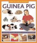How to Look After Your Guinea Pig - Book