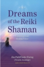 Dreams of the Reiki Shaman : Expanding Your Healing Power - eBook