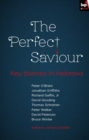 The Perfect Saviour - eBook