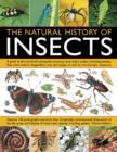 Natural History Of Insects - Book