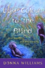 Like Colour to the Blind : Soul Searching and Soul Finding - eBook