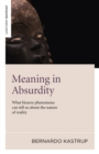 Meaning in Absurdity : What Bizarre Phenomena Can Tell Us About the Nature of Reality - Book
