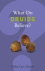 What Do Druids Believe? - eBook