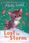 Lost in the Storm - Book