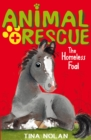 The Homeless Foal - Book