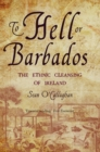 To Hell or Barbados : The ethnic cleansing of Ireland - eBook