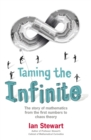 Taming the Infinite : The Story of Mathematics - Book