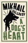 A Dog's Heart: New Translation - Book