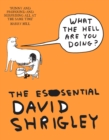 What The Hell Are You Doing?: The Essential David Shrigley - Book