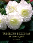 Tuberous Begonias : An Essential Guide - Book