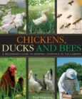 Chickens, Ducks and Bees : A beginner's guide to keeping livestock in the garden - eBook