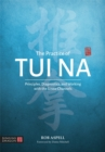 The Practice of Tui Na : Principles, Diagnostics and Working with the Sinew Channels - Book