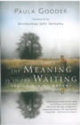 The Meaning is in the Waiting : The Spirit of Advent - eBook