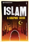 Introducing Islam : A Graphic Guide - Book