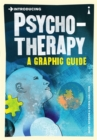 Introducing Psychotherapy : A Graphic Guide - Book