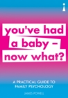 A Practical Guide to Family Psychology : You've had a baby - now what? - eBook