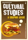 Introducing Cultural Studies : A Graphic Guide - eBook