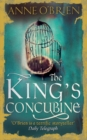The King's Concubine - Book
