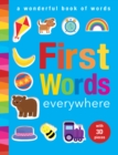 First Words Everywhere : A Wonderful Book of Words - Book