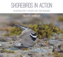Shorebirds in Action : An Introduction to Waders and Their Behaviour - Book